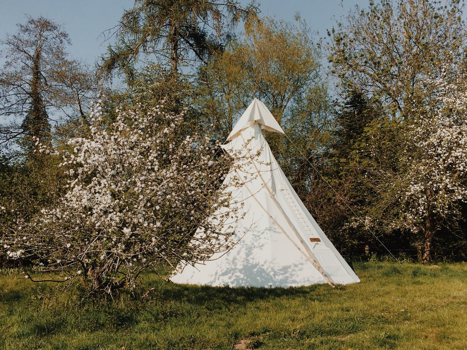 "<h1><span style=""color: #5e715b"">Our Tipis</span></h1>"