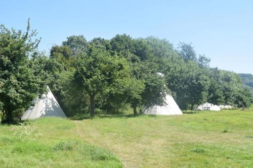 Our tipis :)